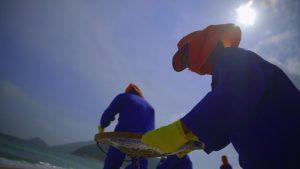 Ibama orienta voluntários no trabalho de limpeza das praias atingidas pelo óleo
